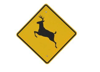 Deer Crossing Sign | Outdoor Newspaper