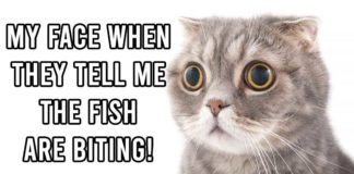 Fishing Meme: My Face When They Tell Me the Fish are Biting! Outdoor Newspaper