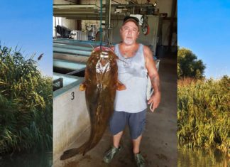 Featured Image: Lavon Nowling Florida fisherman New Florida State Record Flathead Catfish