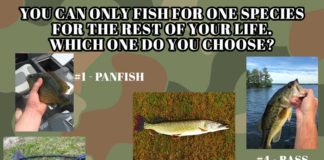 Fishing Meme: You can only fish for one species for the rest of your life. Which one do you choose? | Outdoor Newspaper