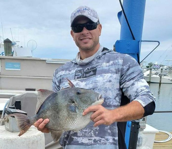 Angler Catches Maryland Record Gray Triggerfish ...