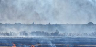IDNR Conservation Police Warn Hunters to Avoid Baiting Violations in Fields Damaged by Fire